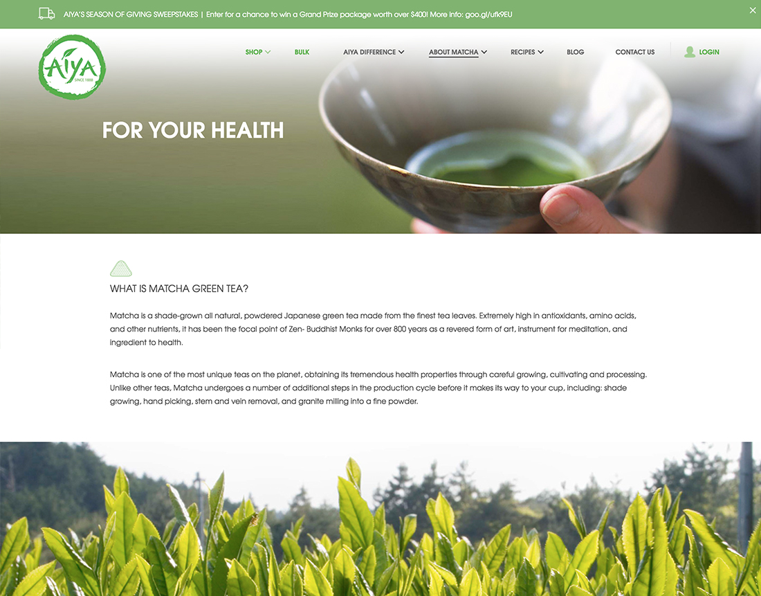 premium-matcha-tea-company-gets-a-fresh-look-online-13