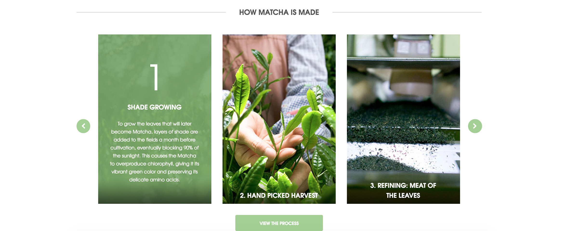 Premium Matcha Tea Company Brews a New Look Online Build Image-2