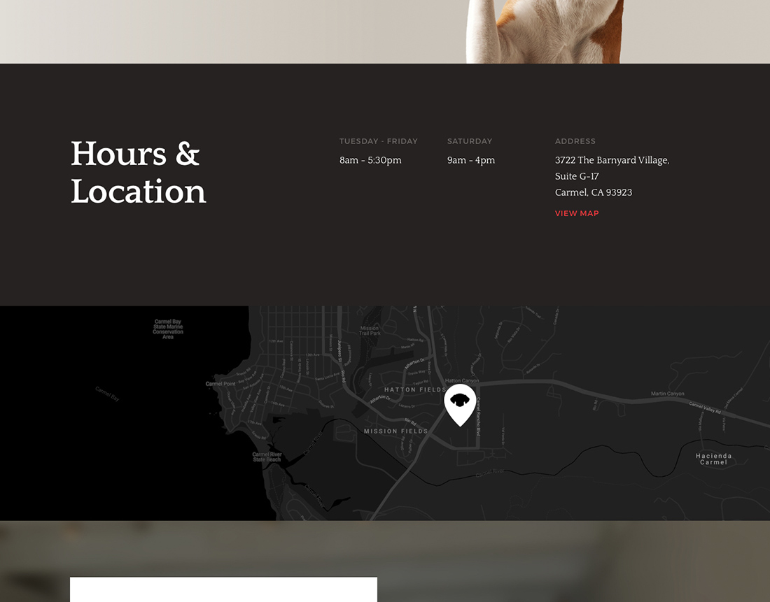 monterey-bay-animal-dermatology-webdesign-casestudy-5