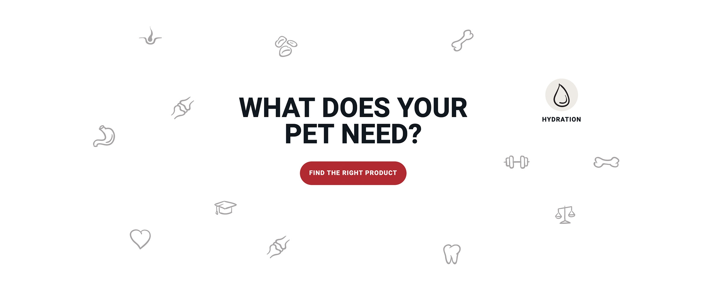 Creating the purr-fect new website for a popular pet food brand Build Image-1