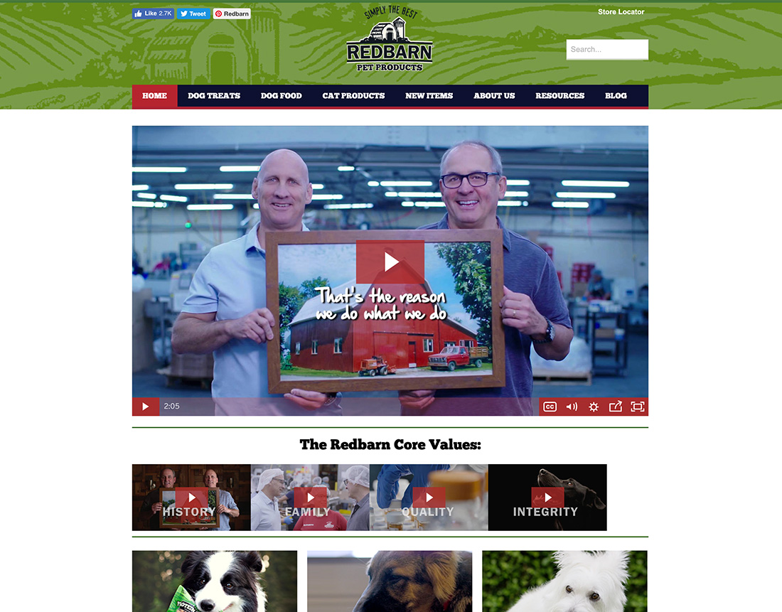 creating-the-purr-fect-new-website-for-a-popular-pet-food-brand-0
