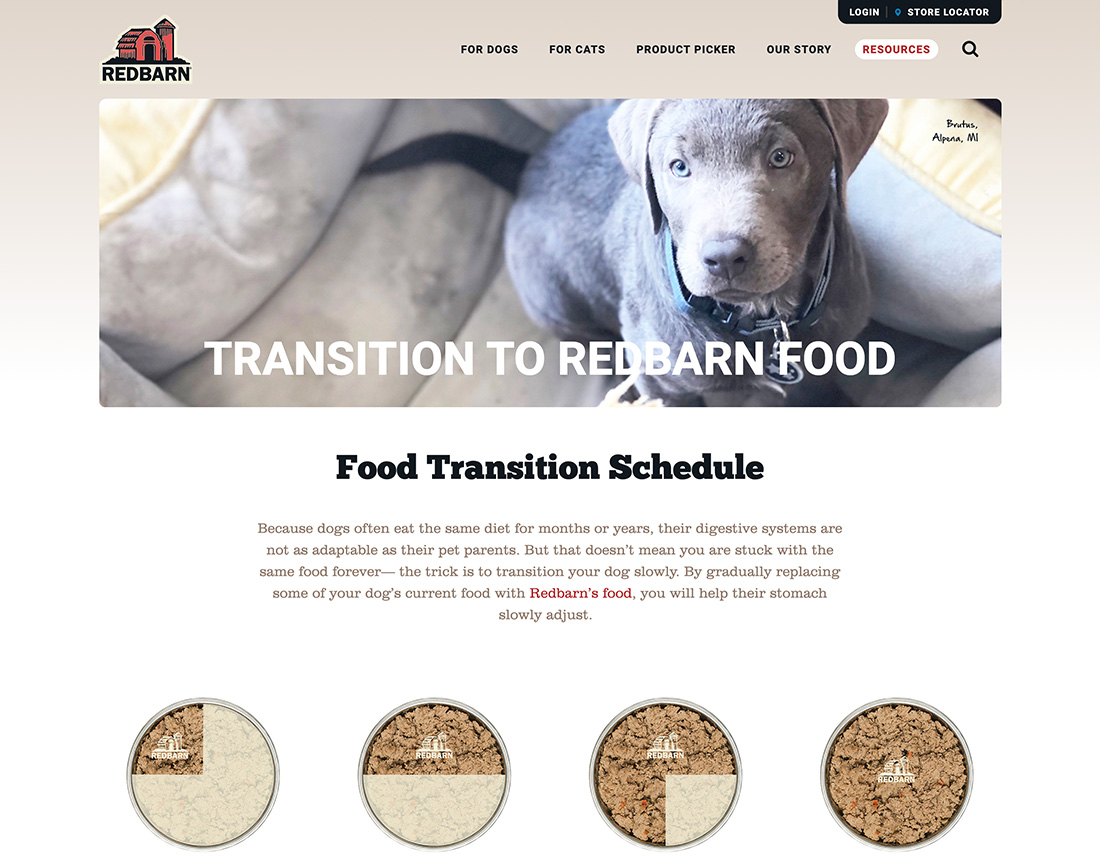 creating-the-purr-fect-new-website-for-a-popular-pet-food-brand-11