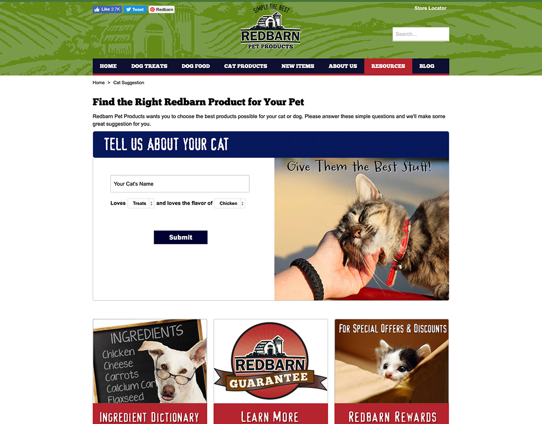 creating-the-purr-fect-new-website-for-a-popular-pet-food-brand-4